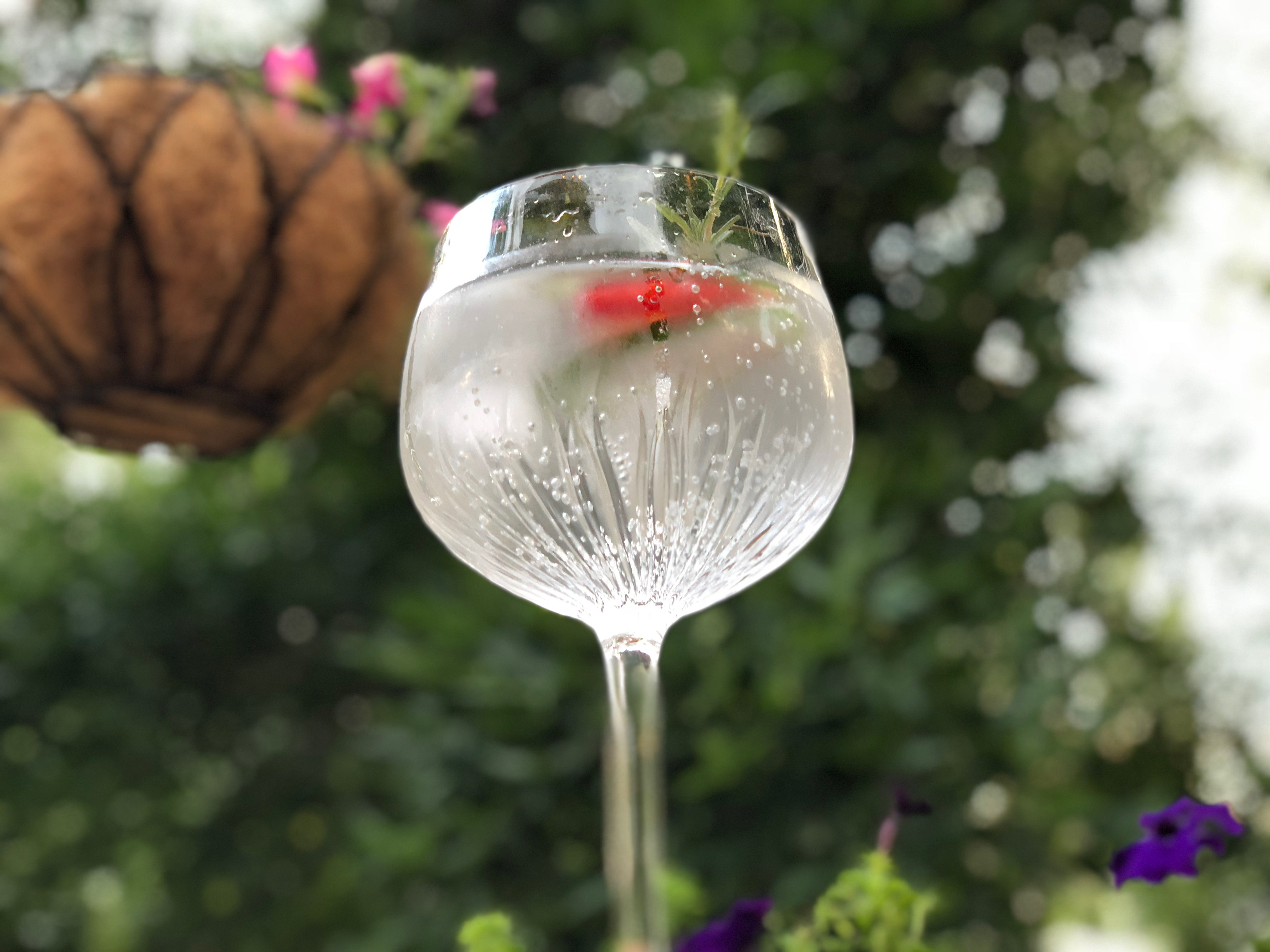 Why You Should Serve Your Gin and Tonic in a Copa Glass